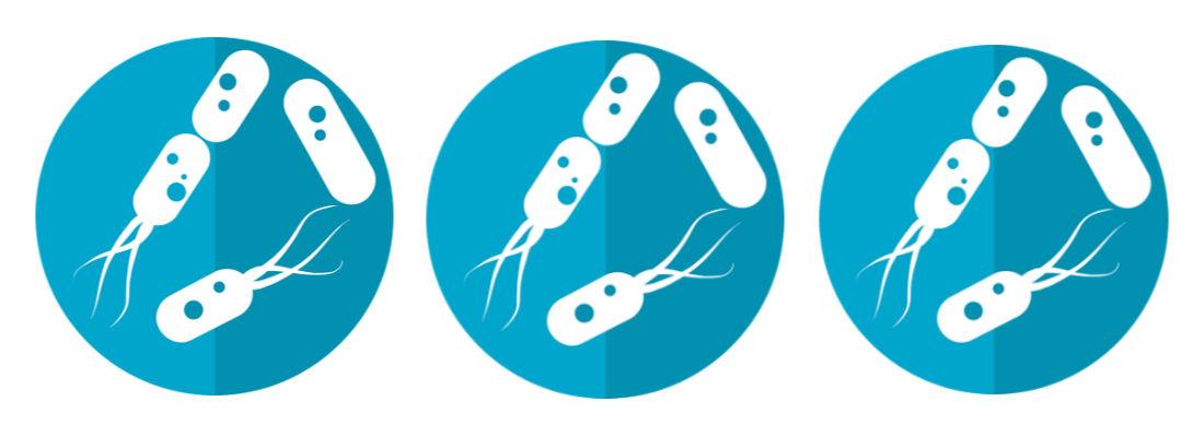 cuando tomar probioticos blog